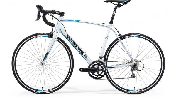 boggy fat bike